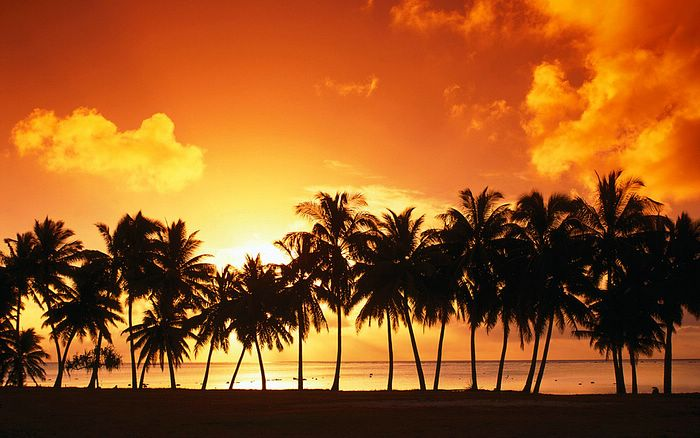 Free Desktop Wallpaper Widescreen Sunset Beach Widescreen
