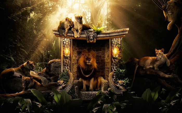 King of jungle creative animal digital art wallpapers 10 for Home wallpaper jungle