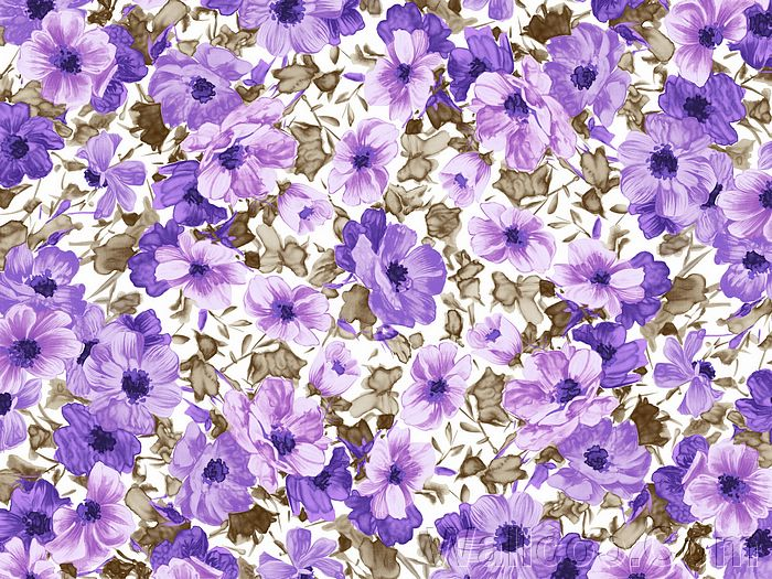 Description Flower Pattern Wallpaperflower Wallpaper Iphoneflower Hdflower Designflower