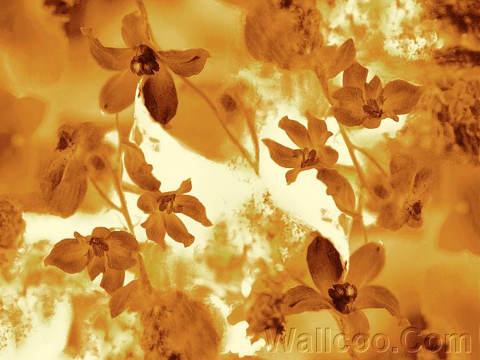 artistic photography wallpaper. Artistic Floral Patterns and