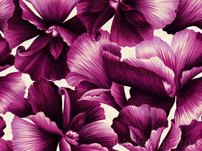 patterns backgrounds. flower patterns wallpaper.