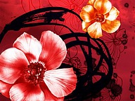 Artistic Floral Illustrations and Designs (Vol.02)42 pics