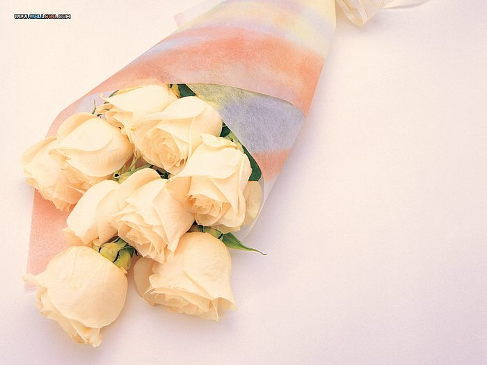 white rose bouquet picture 35 - wallcoo, Ideas