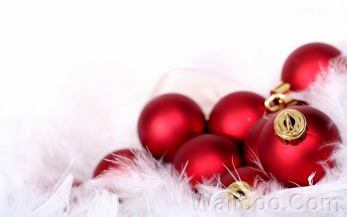 hd wallpaper trees. HD Wallpaper 、Christmas