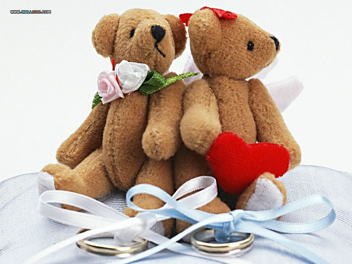 Wedding Favors Wallpapers - Wedding teddy bear Wallpaper - Bridal teddy bear