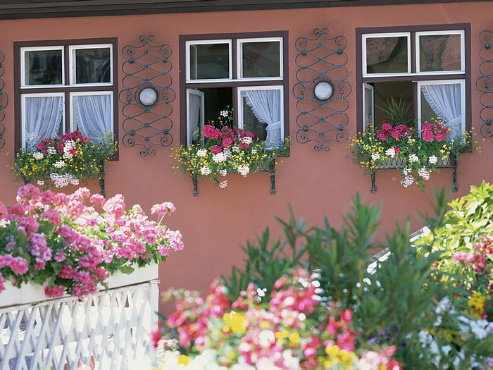 German Window Boxes Windows And Flower Boxes