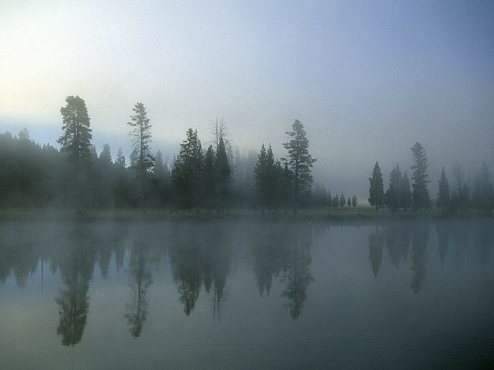 Landscapes photography morning fog over yellowstone river wyoming 33