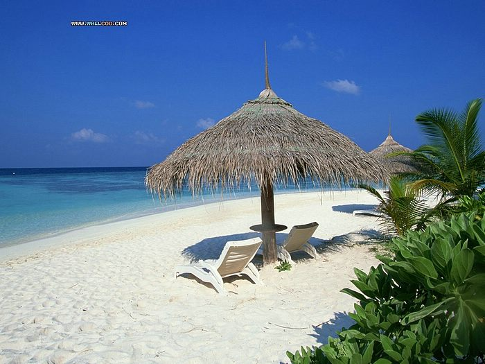 maldives wallpaper. Maldives beach wallpaper,