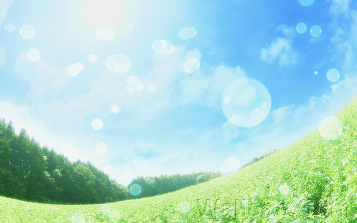 Eco Concept and Photo Manipulation of Environment and Nature - Dreamy ethereal glassland,  Soap bubbles under blue sky and sunlight3