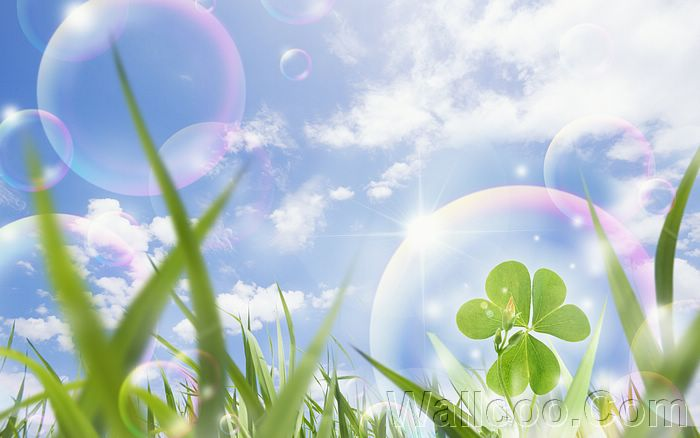 Eco Concept and Photo Manipulation of Environment and Nature - Eco Concept Photos - Blue sky and Gassland, bubbles and clover9