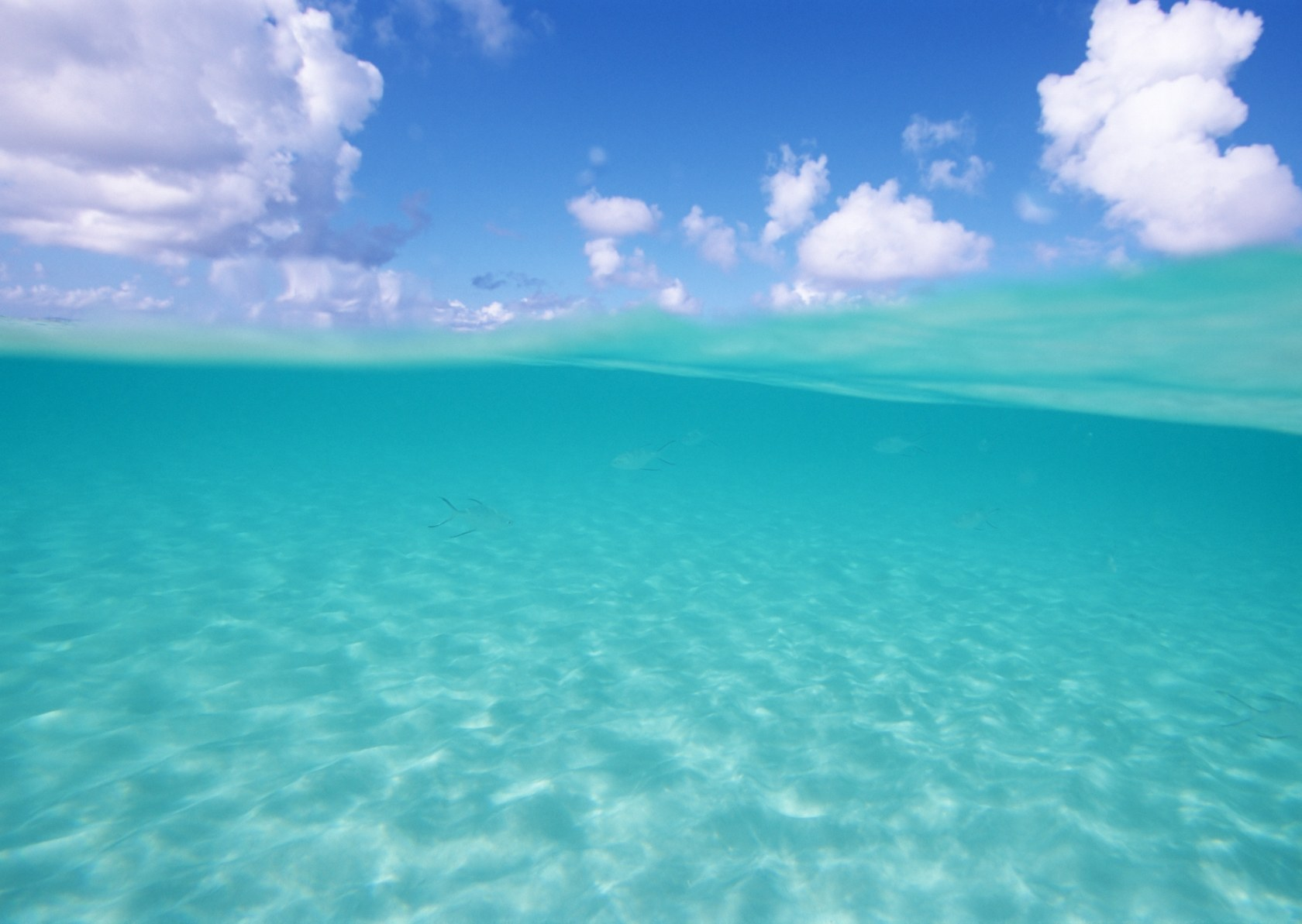 Okinawa's Beautiful Sea : Okinawa's Aquamarine Water And