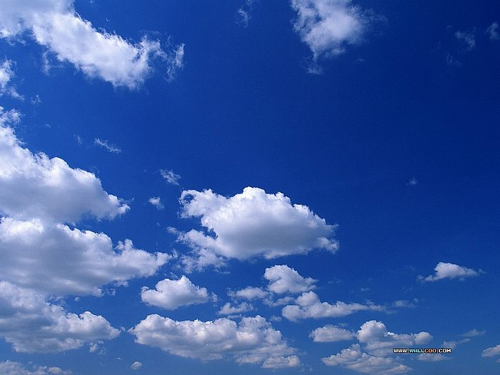White Cloud Blue Sky Wallpaper 14