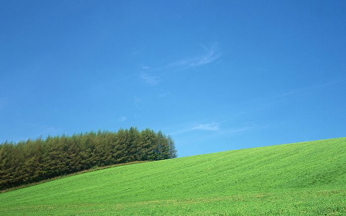 Hokkaido Travel: Summer Country Field - Blue Sky and Green Field, Peaceful  Farm landscape - Blue Sky And Green Field, Peaceful Farm Landscape Wallpaper 14