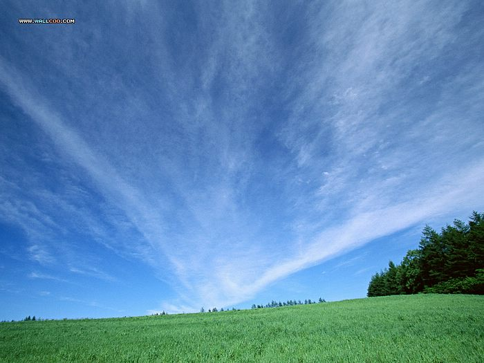 wallpaper blue sky. lue sky and pastures