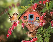 Pretty Songbirds - Gorgeous Birds Paintings by Janene Grende13 pics