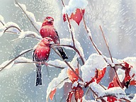 Songbirds in Garden - Watercolor Paintings of Cute Little Birds12 pics