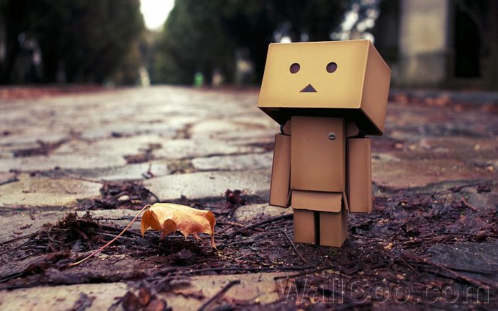 Danbo Danboard Widescreen Wallpapers - Sad Danbo - Danbo Danboard Photos
