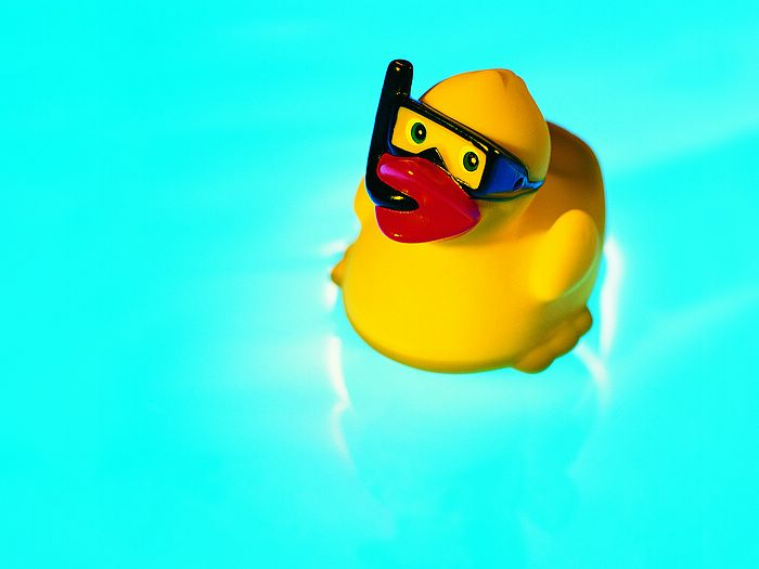 Iconic summer still life - summer fun : lovely rubber duck on water 14