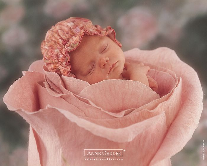 Anne Geddes Baby Wallpapers