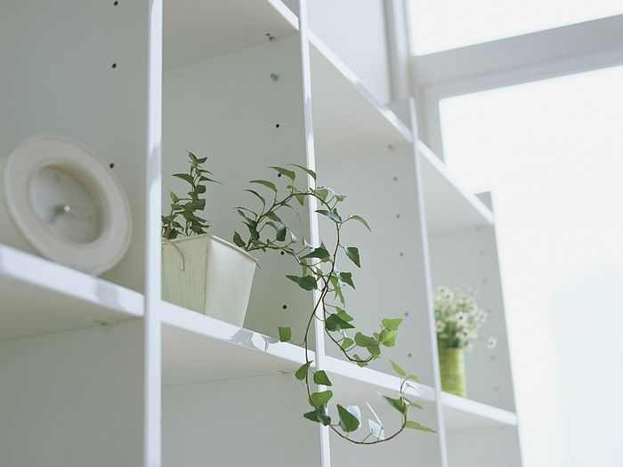 30pics living space small interior items vol02 potted - Home Interior Items