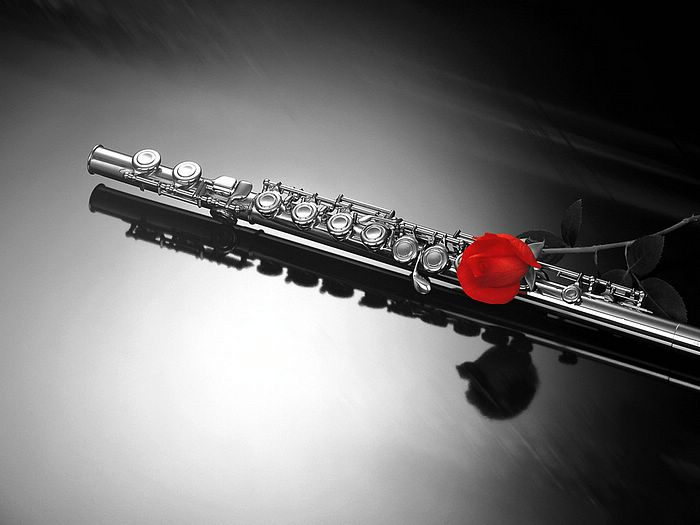 Rose And Clarinet Black Red 6