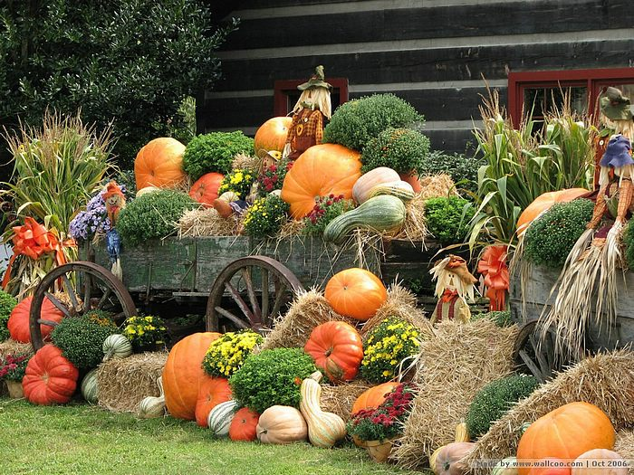 Pumpkin Display Horse Wagon With Pumpkins And Scarecrows 2