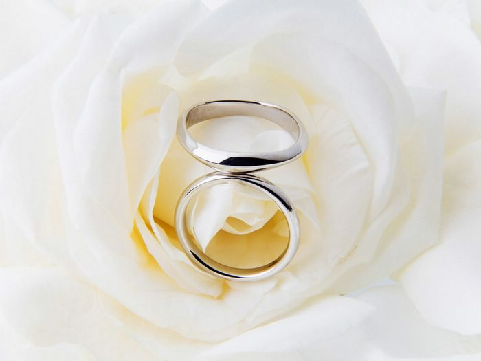 photographs wedding flowers rings